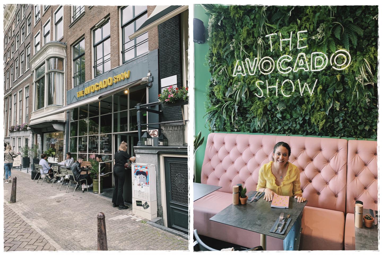 avocado show meilleur brunch Amsterdam